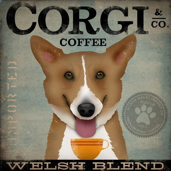 welsh corgi coffee company original graphic art on canvas 12 x 12 x