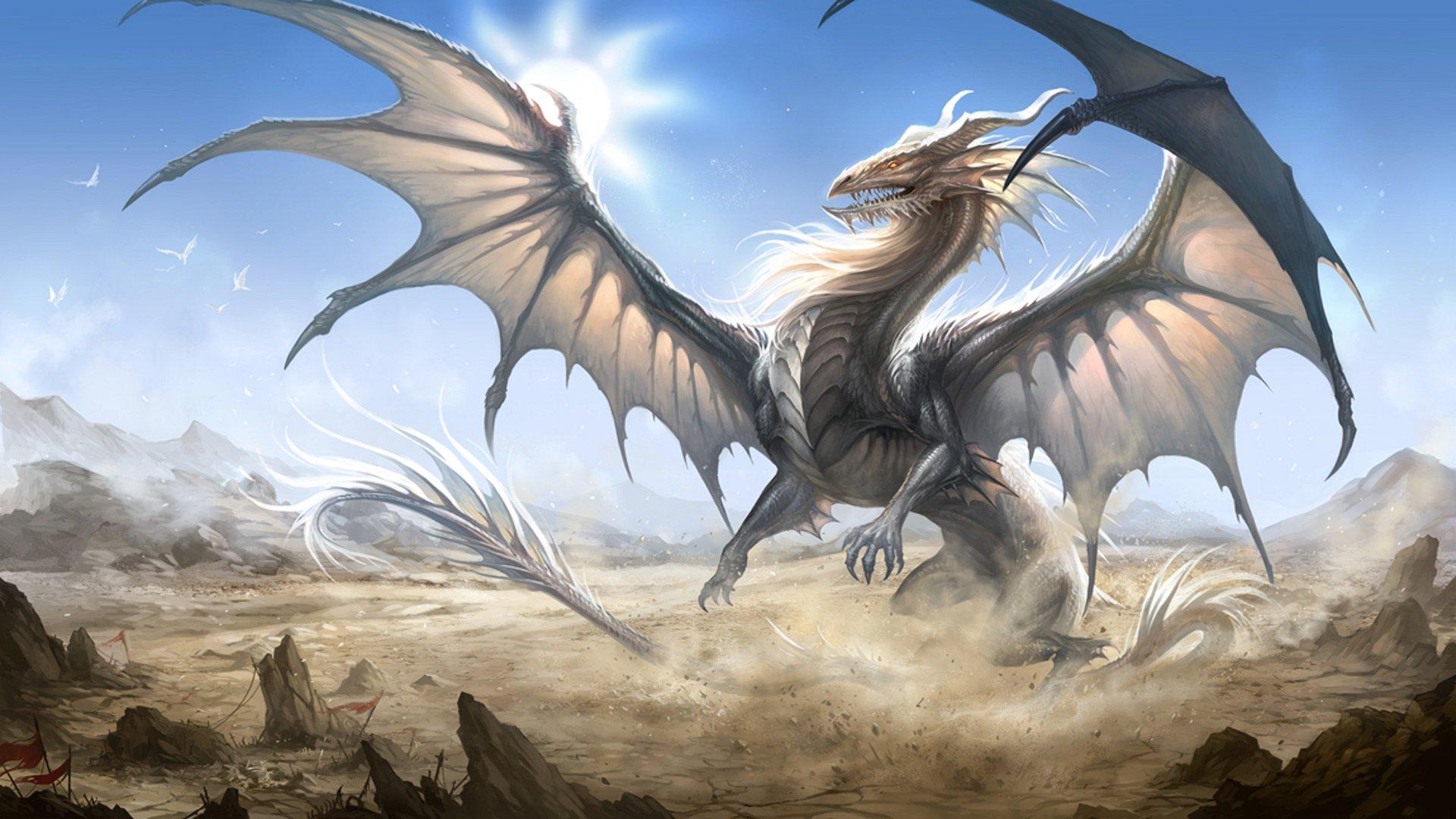 Ogo9ws8 Png 1920 1080 Fantasy Dragon Dragon Pictures White Dragon