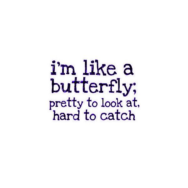 So True Butterfly Quotes Sarcastic Quotes Funny Funny Quotes