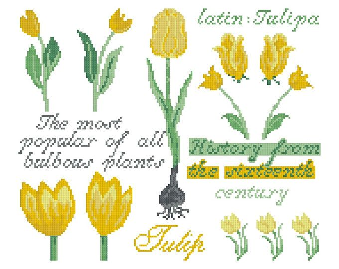 Cross stitch pattern TULIP SAMPLER  cross stitch,needlepoint,embroidery,tulips,embroidery pattern,swedish,florals,diy,pretty,anette eriksson