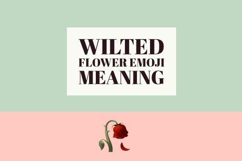 Emoji Flower Meaning   Best Flower Site
