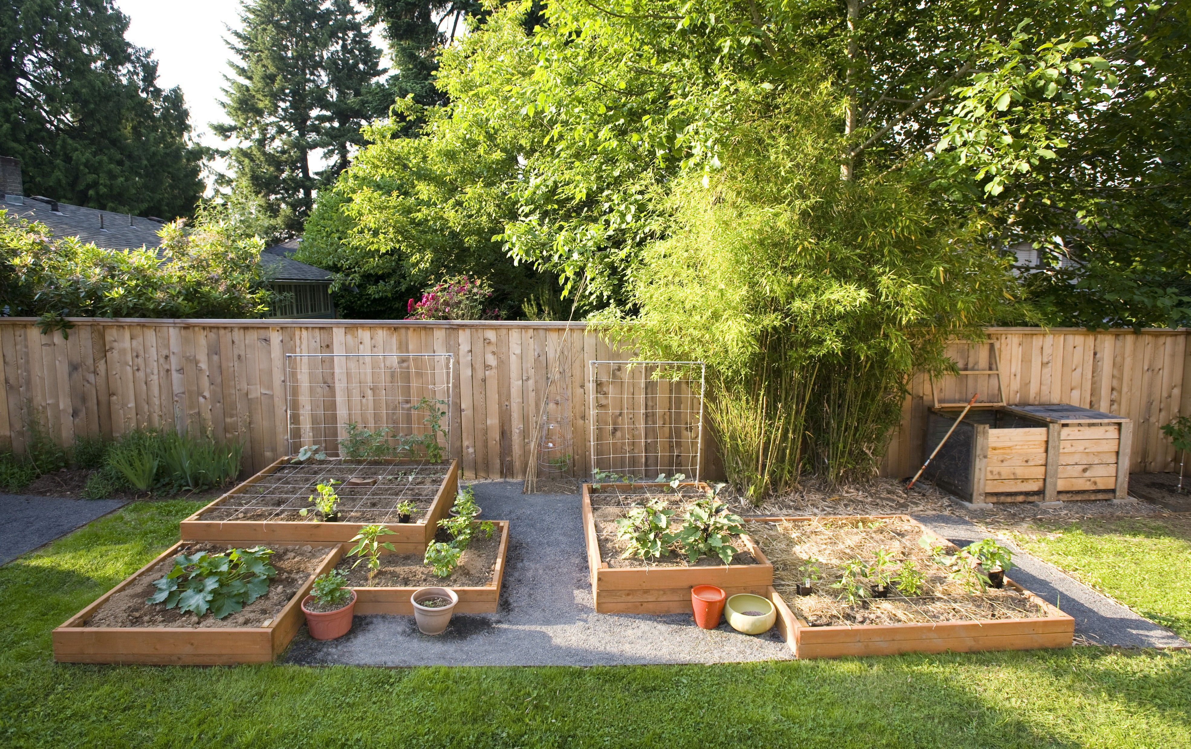 Garden And Patio, Small Square Foot Backyard Vegetable Garden Ideas With  Wood Raised Bed And Wire Trellis Wooden Fence And Bamboo Plants Plus  Gravels And ...