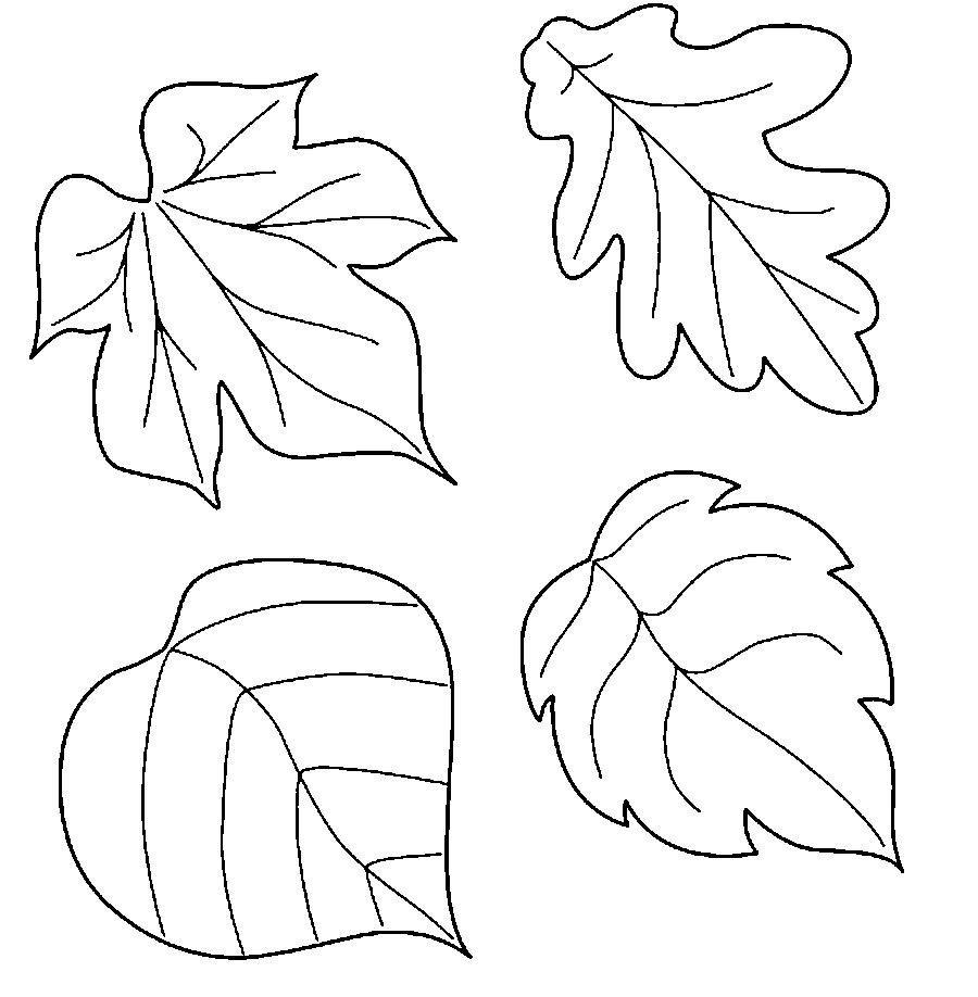 Осенние листочки картинки для оформления трафарет