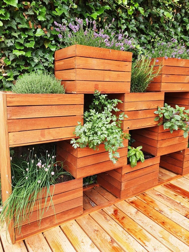 Photo of Vertical garden made of fruit boxes –  Do you have little space on the balcony o…