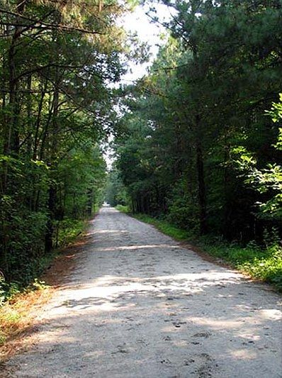 Mountain Bike Trails In Raleigh Nc