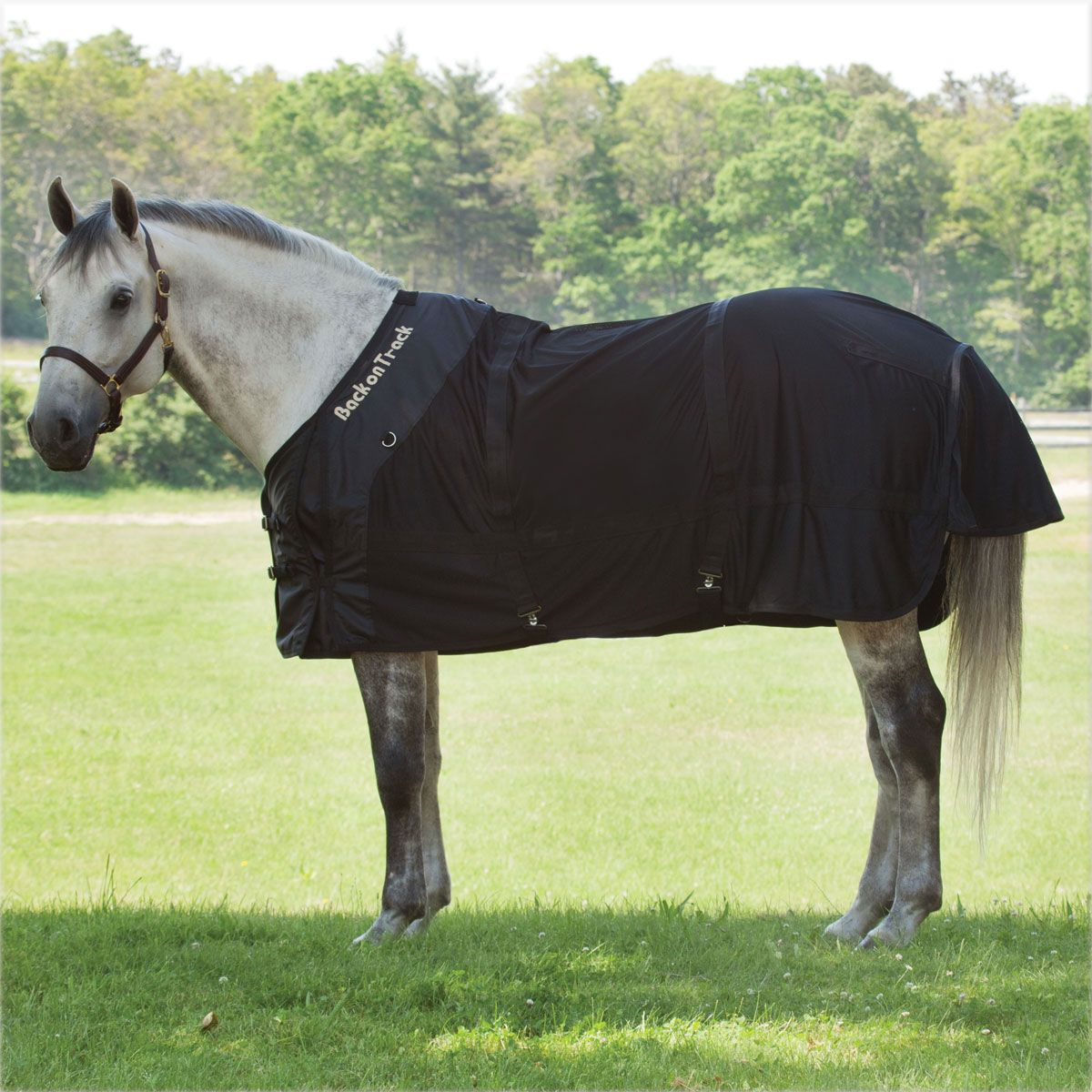 Back On Track Mesh Sheet Horse Sheets From Smartpak Equine Horse Blankets Horses Equestrian Outfits