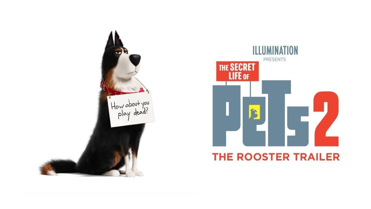 The Rooster Trailer The Secret Life Of Pets 2 With Images Secret Life Of Pets Movies Out In Theaters Secret Life