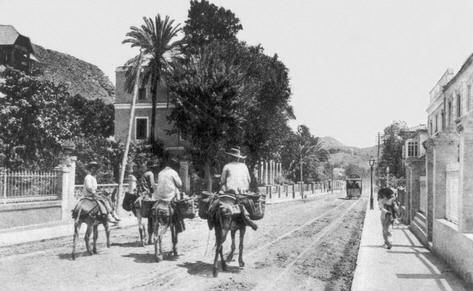 Paseo De Sancha Año 1910 Málaga Ciudad De Málaga Fotografía Antigua