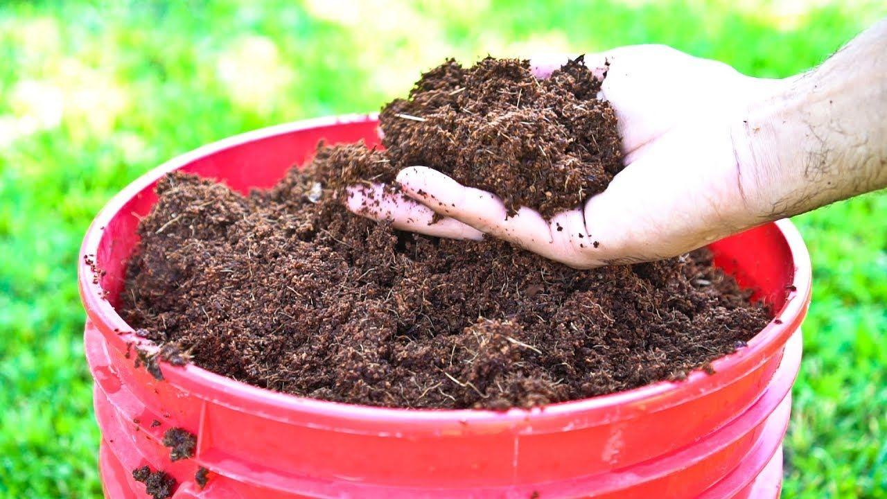 b077140430a6cf84f2c6a0e11feaffd1 - How To Use Coconut Coir In Gardening