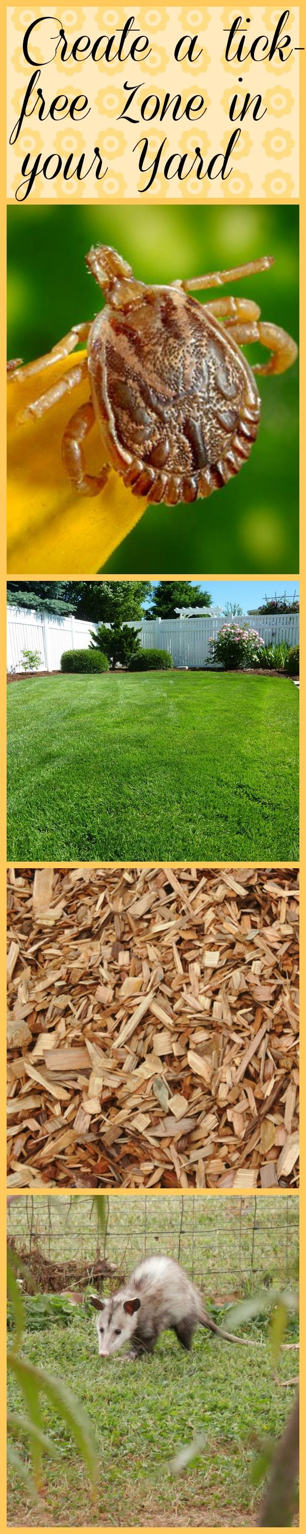 Create a Ticksafe Zone in your Yard Diatomaceous earth