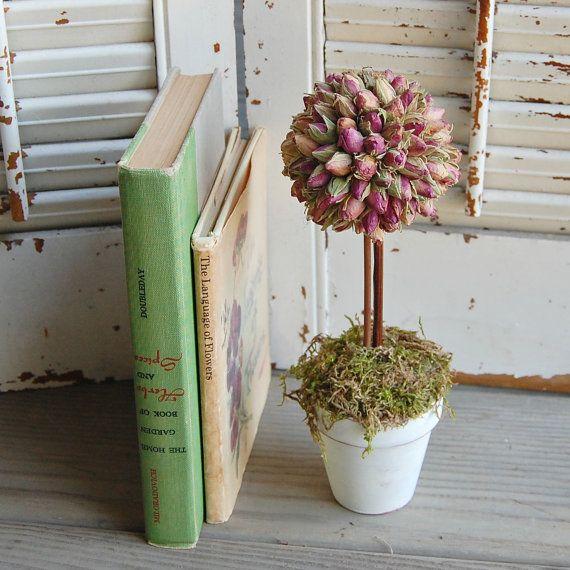 Dried Pink Rosebud Topiary / PInk Roses /  Dried Flower / Shabby Cottage Decor on Etsy, $18.00