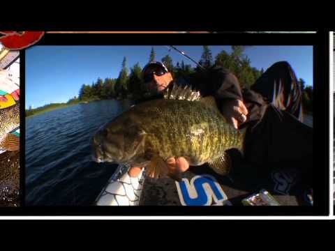 Slow Down Your Presentation in the Fall - Dave Mercer's Facts of Fishing (Video)