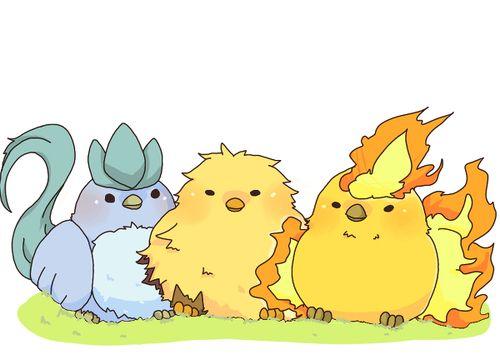 593638d3 Articuno, Zapdos, and Moltres! Too cute! | Adorbs | Pokemon, Cute ...
