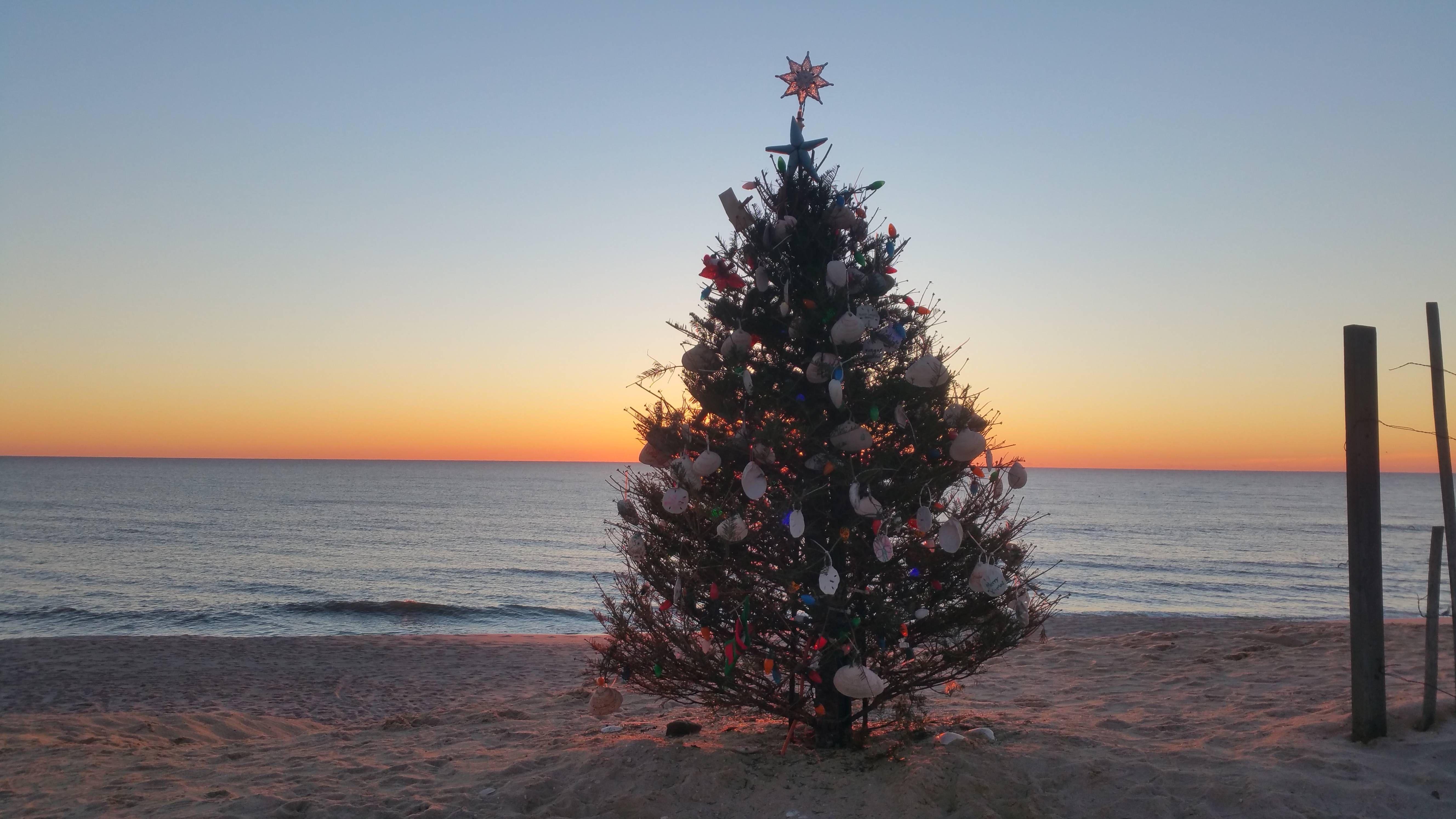 Our beach xmas tree with a nice sunrise in normandy beach nj oc