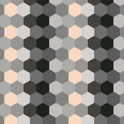 varpunen's hexagons...