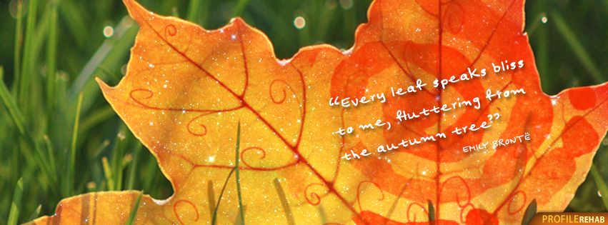 Short Fall Quotes Facebook Cover Fall Season Quotes