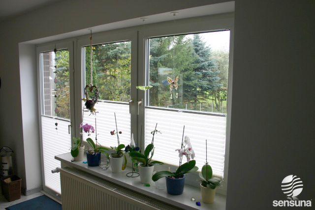 Sichtschutz Plissee für Fenster und Türen #Balkon BALKON Pinterest - sichtschutz f r badezimmerfenster