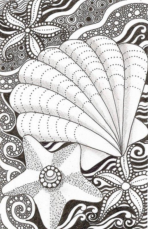 Dibujos para colorear para adultos Estrella de mar y concha ...