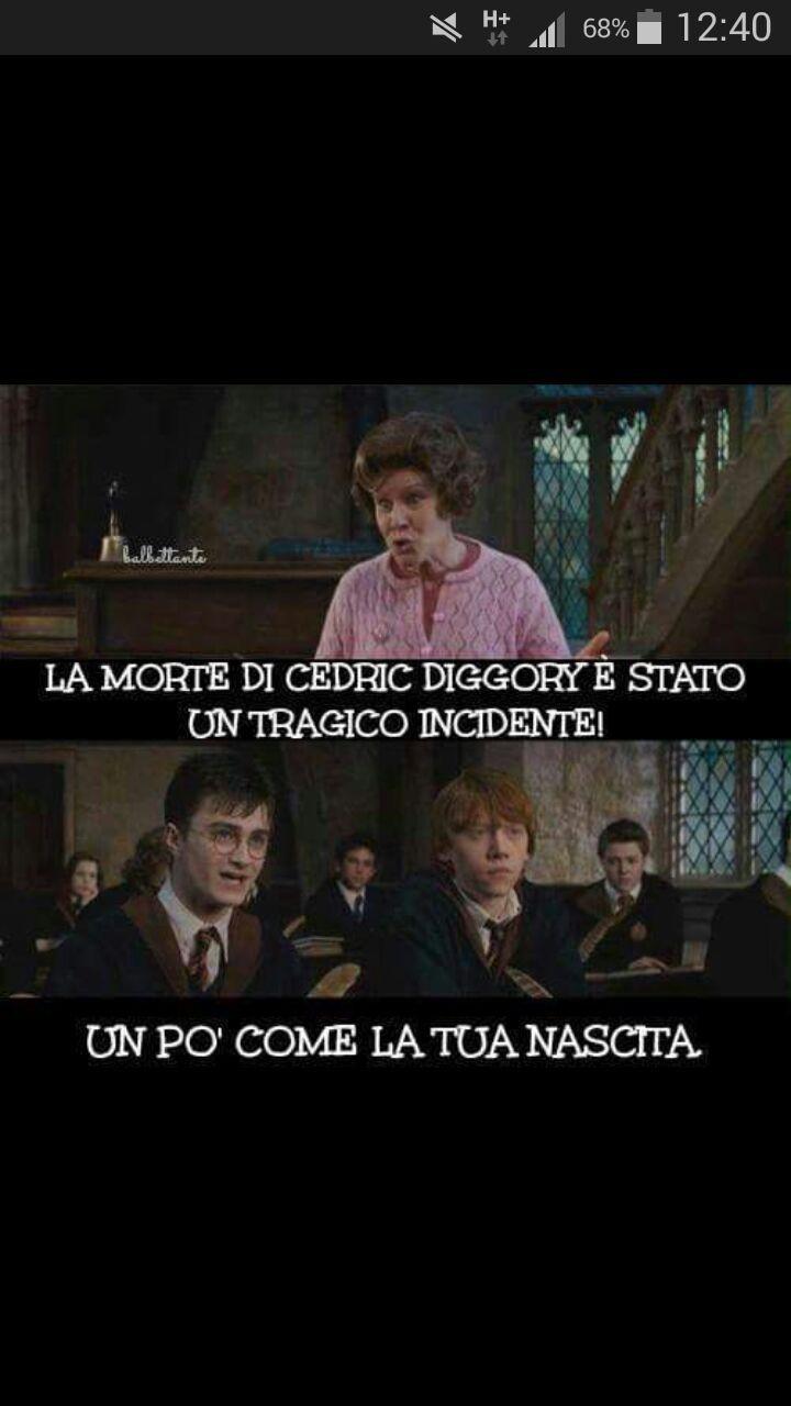 Italian Meme Harry Potter Engracado Melhores Declaracoes De Amor Engracado