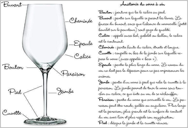 Epingle Par Eric Sur Le Vin Les Bases Wine Basics Verre De Vin Vin Verre
