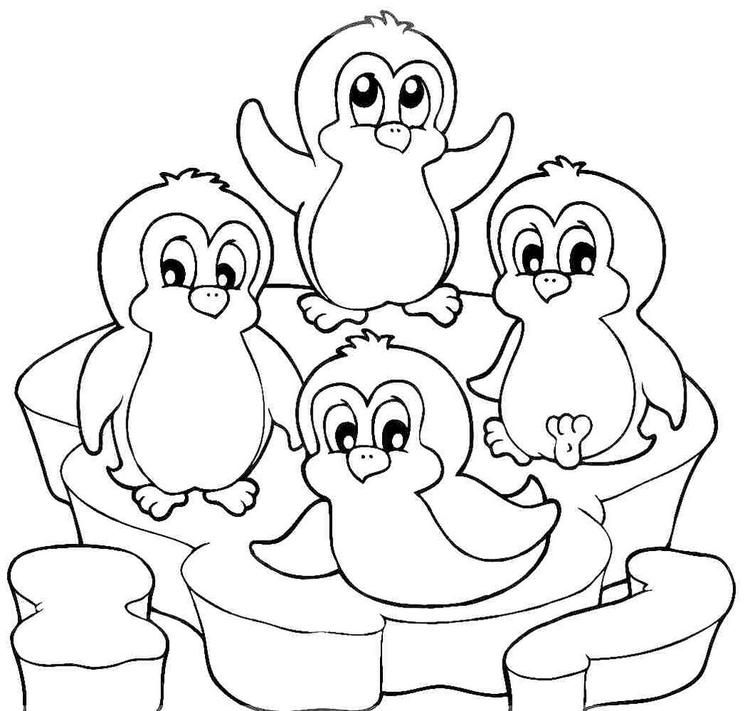 Penguin Winter Animal Coloring Page Penguin coloring