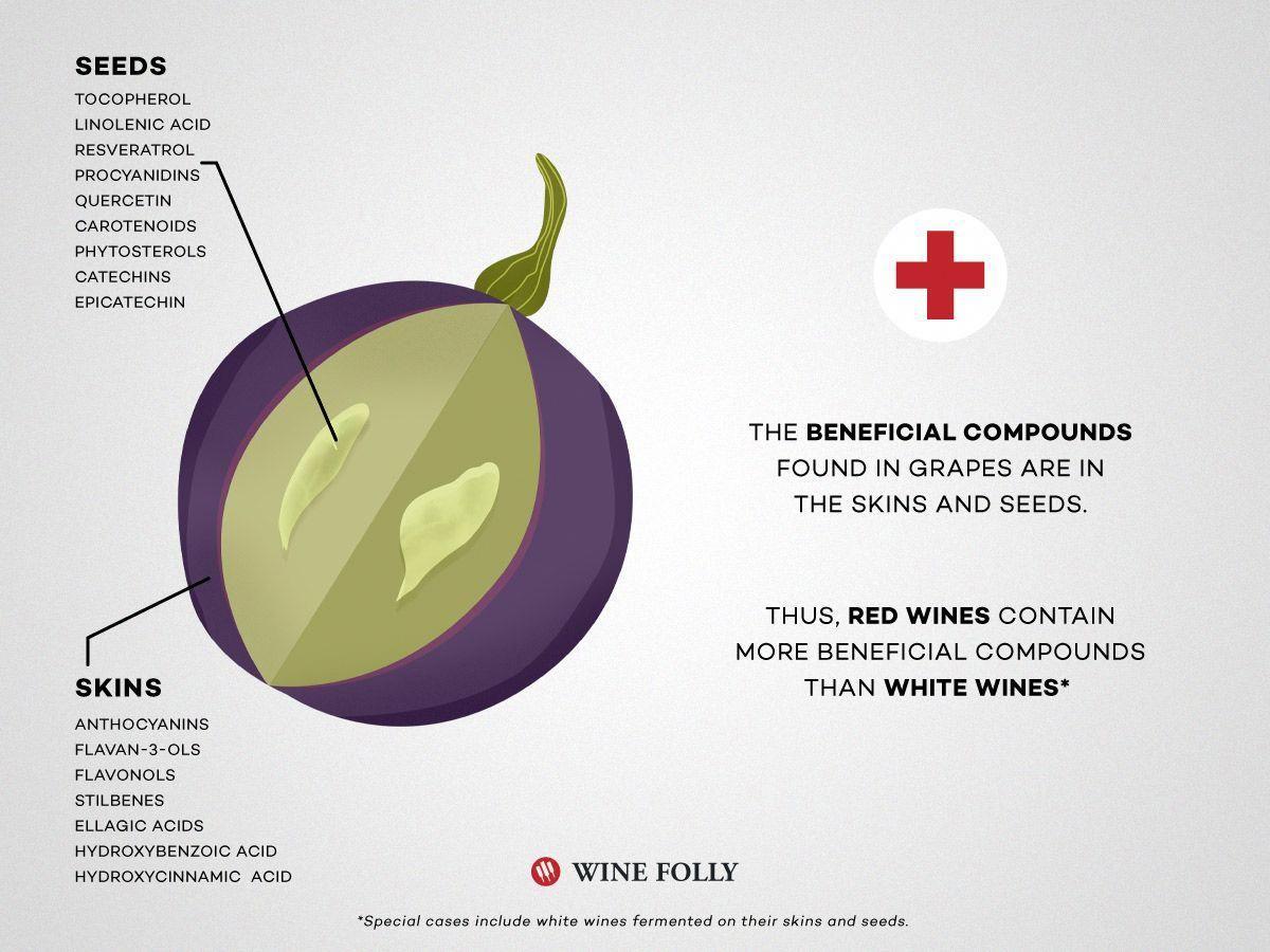 Wine Folly Ebook