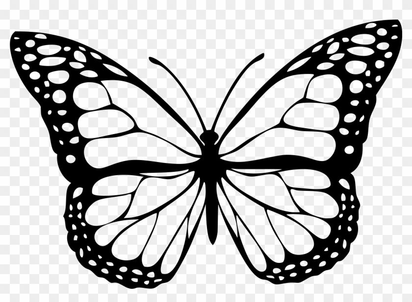 Butterfly Clipart Black And White Png Butterfly Clip Art White Butterfly Tattoo Butterfly Drawing