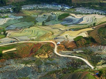 Terraced rice fields are seen from above in Lao Cai Province in northern Vietnam. Rice is one of the country's key exports.