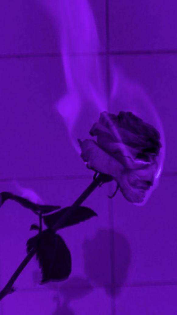 Pin By Martina Xdd On Wall Purple Aesthetic Dark Purple Aesthetic Purple Wallpaper Iphone