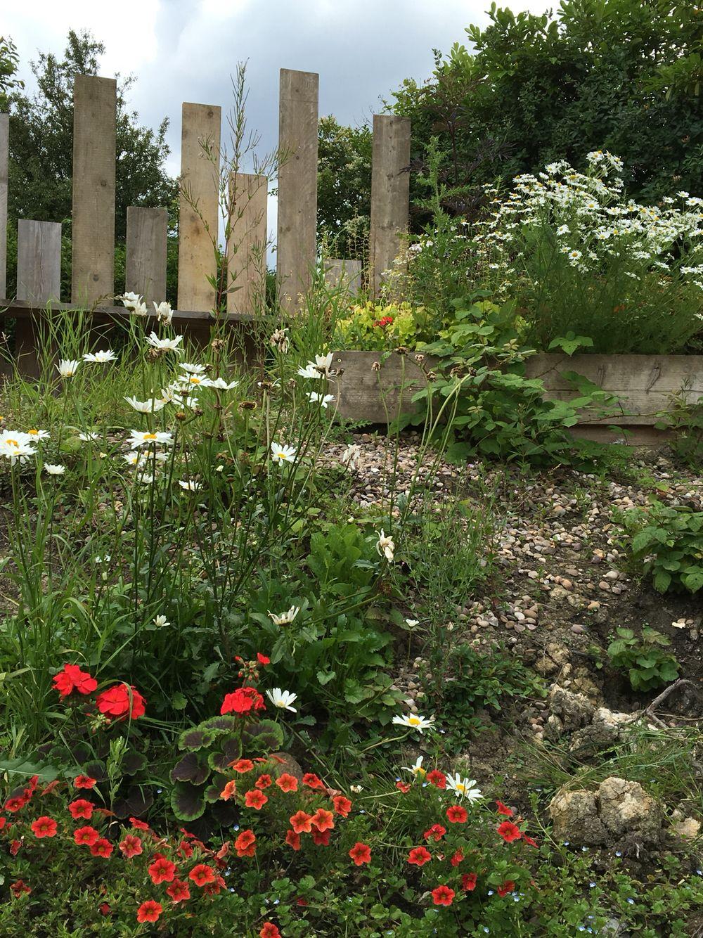jcgardendesign: Garden Design Nottingham
