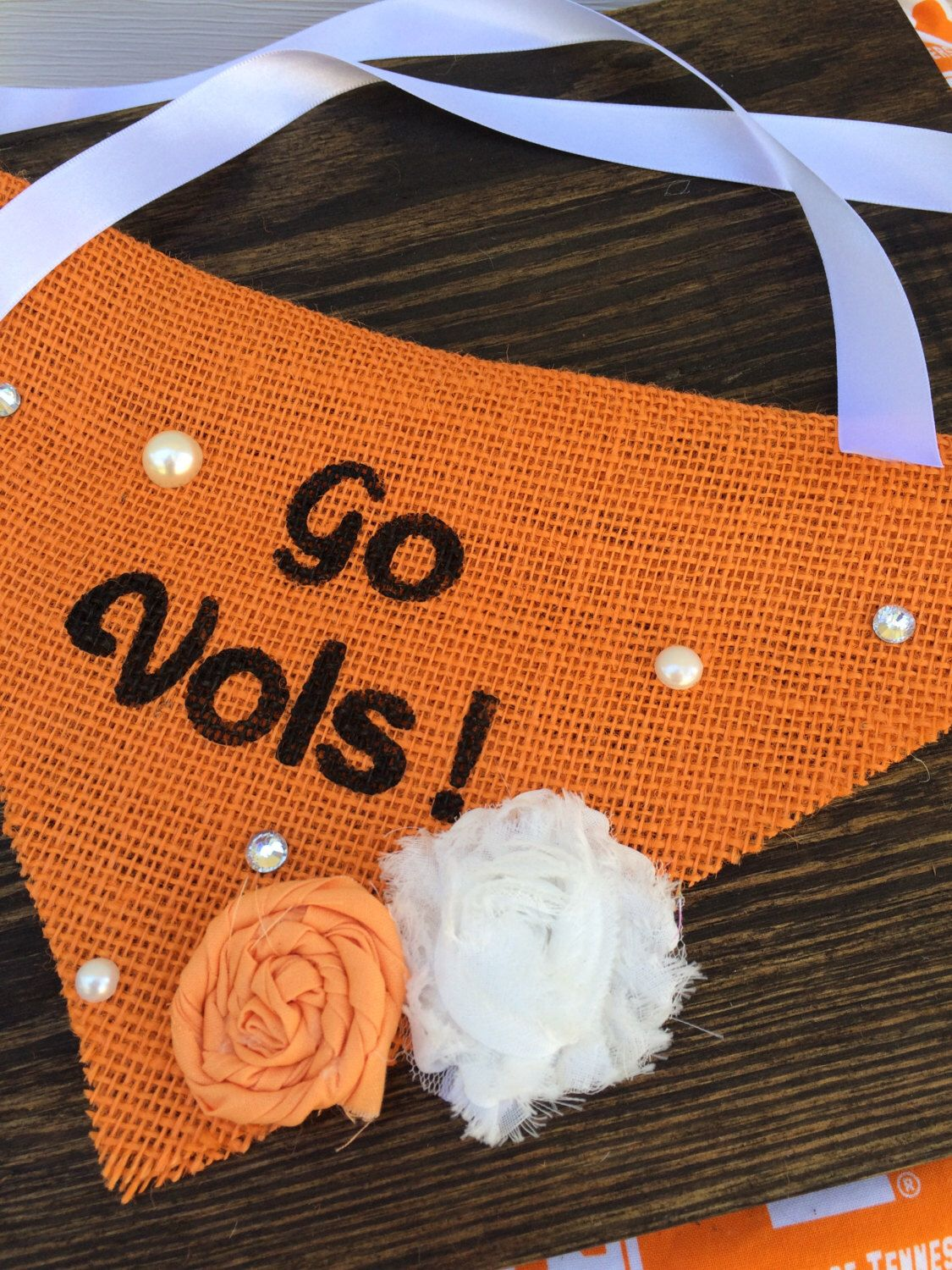 A personal favorite from my Etsy shop https://www.etsy.com/listing/471438268/go-vols-tennessee-dog-bandana-burlap