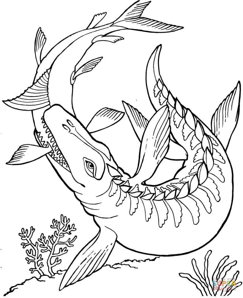 Free Printable Dinosaur Coloring Pages Mosasaurus Dinosaur Coloring Page In 2020 Dinosaur Coloring Pages Dinosaur Coloring Skull Coloring Pages