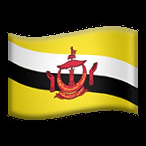 Flag Of Brunei History Of Brunei Flag Brunei Flags Brunei Flag Flag Brunei
