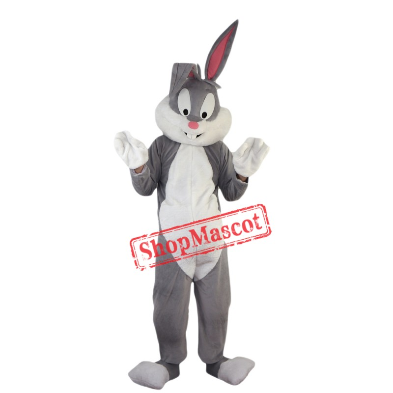 Professional Easter Bunny Mascot Costumes Rabbit And Bugs Bunny Adult Mascot For