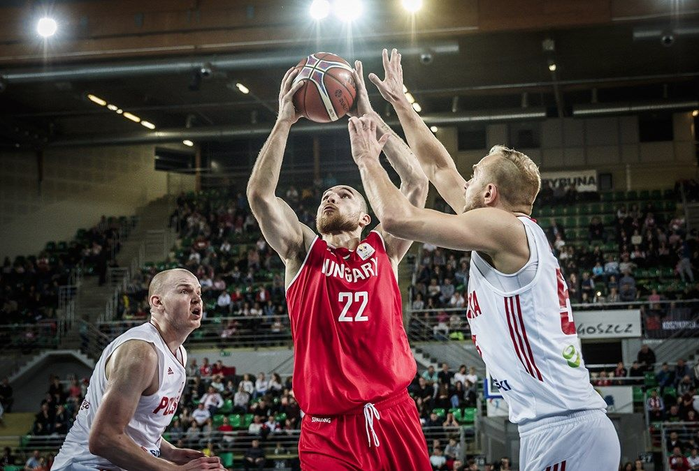 Hungary Vs Poland Live Basketball Stream Game Streaming Sports Channel Live Broadcast