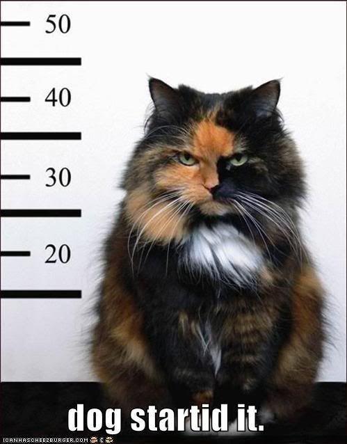 Kitty Con