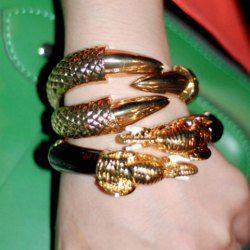 Fashion and Retro Style Owlclaw Shape Bracelet