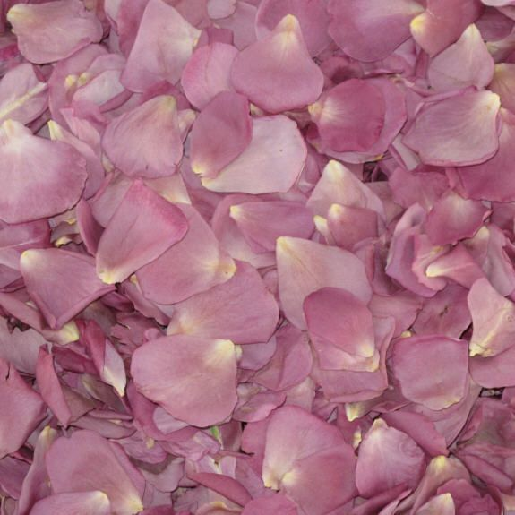 Lavender Simply Marvelous Preserved Freeze Dried Rose Petals Dried Rose Petals Freeze Dried Rose Petals Rose Petals Wedding