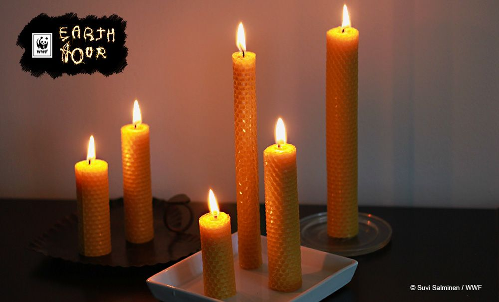 Eco friendly beeswax candles.
