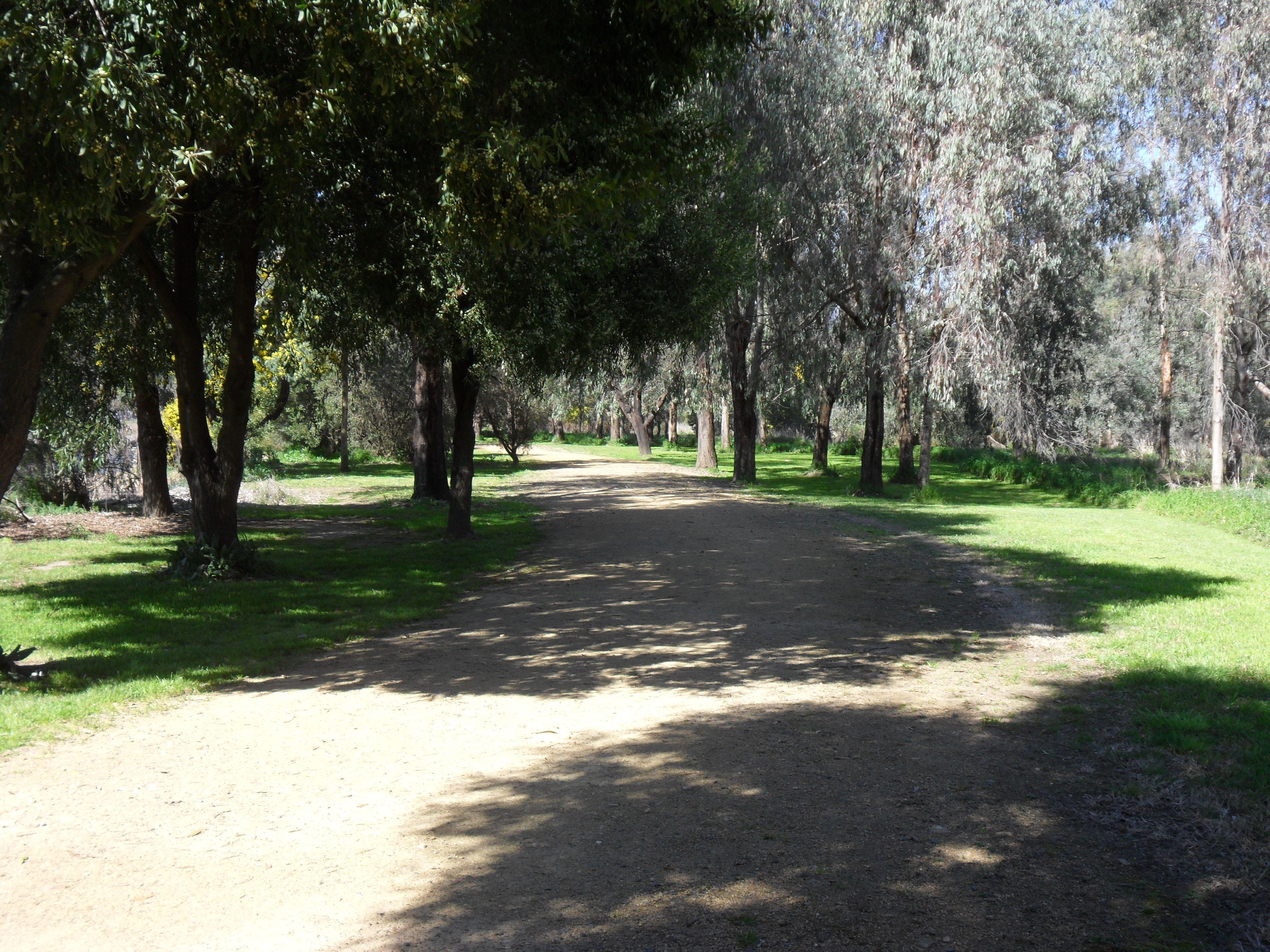 Wetlands Walk