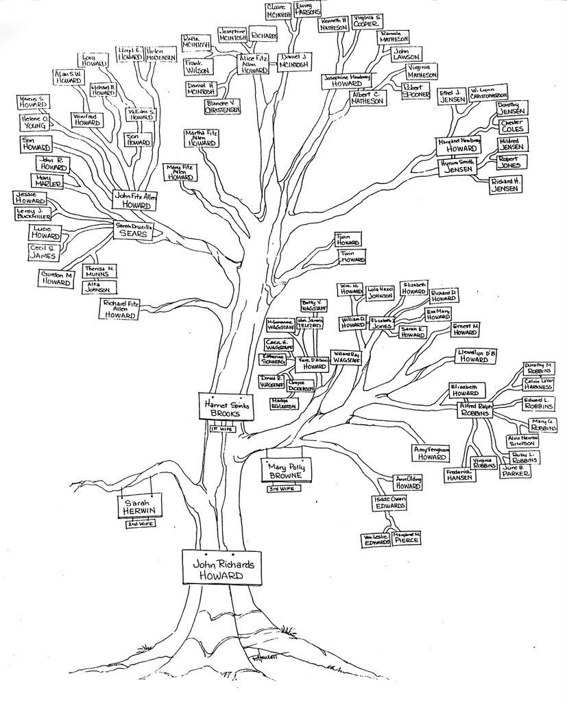 family tree compilation  organization  charting