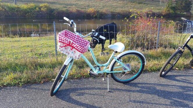 BICYCLE BASKET LINER RED SKULLS /& BONES REVERSABLE NEW!