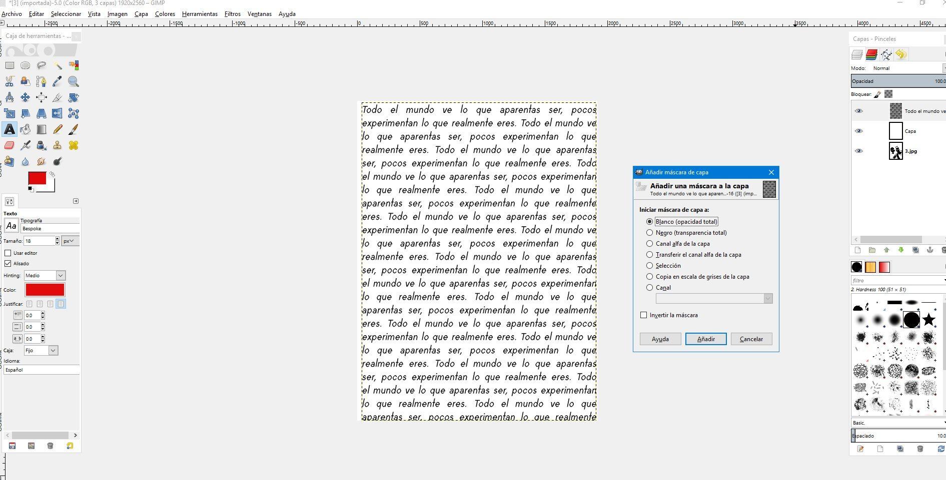 Paso 5 Añadiendo Una Máscara A La Capa Blanco Opacidad Total Disenos De Unas Tipografico Retratos
