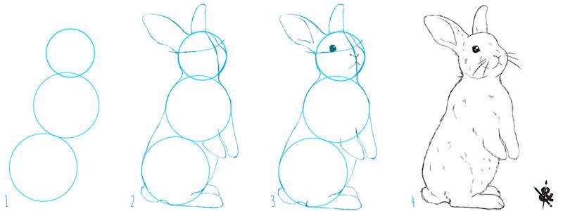 Comment Dessiner Un Lapin Dessin Lapin Comment Dessiner Un Lapin Dessins De Personnages Disney