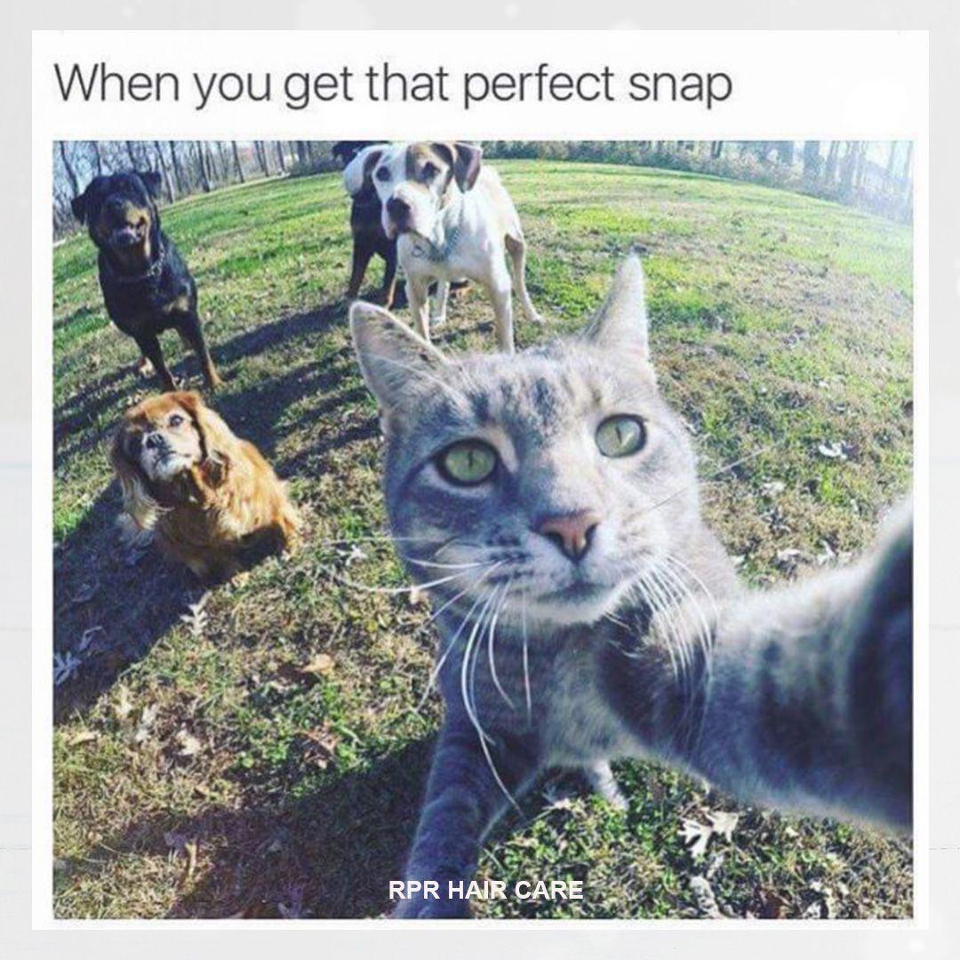 Selfie Goals rprhaircare hair beauty selfiegoals
