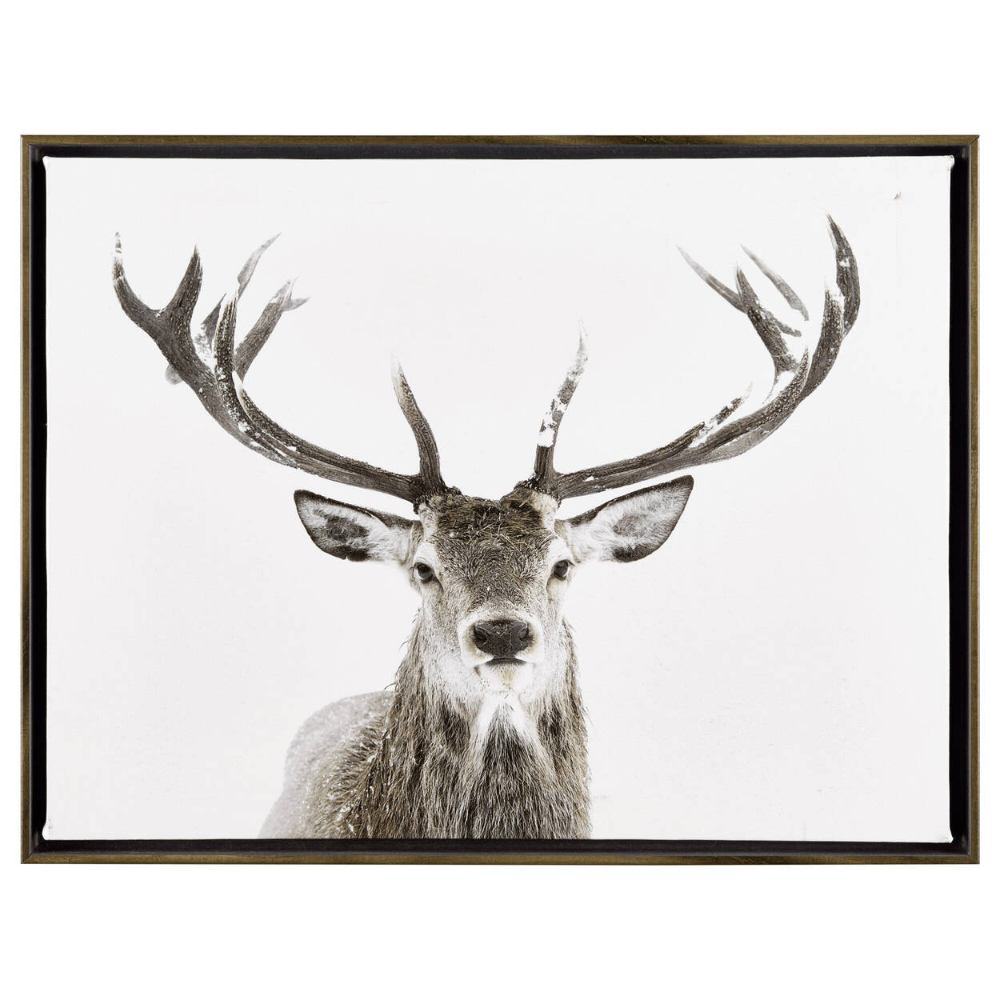 Deer Printed Framed Art Deer Wall Art Deer Print Art