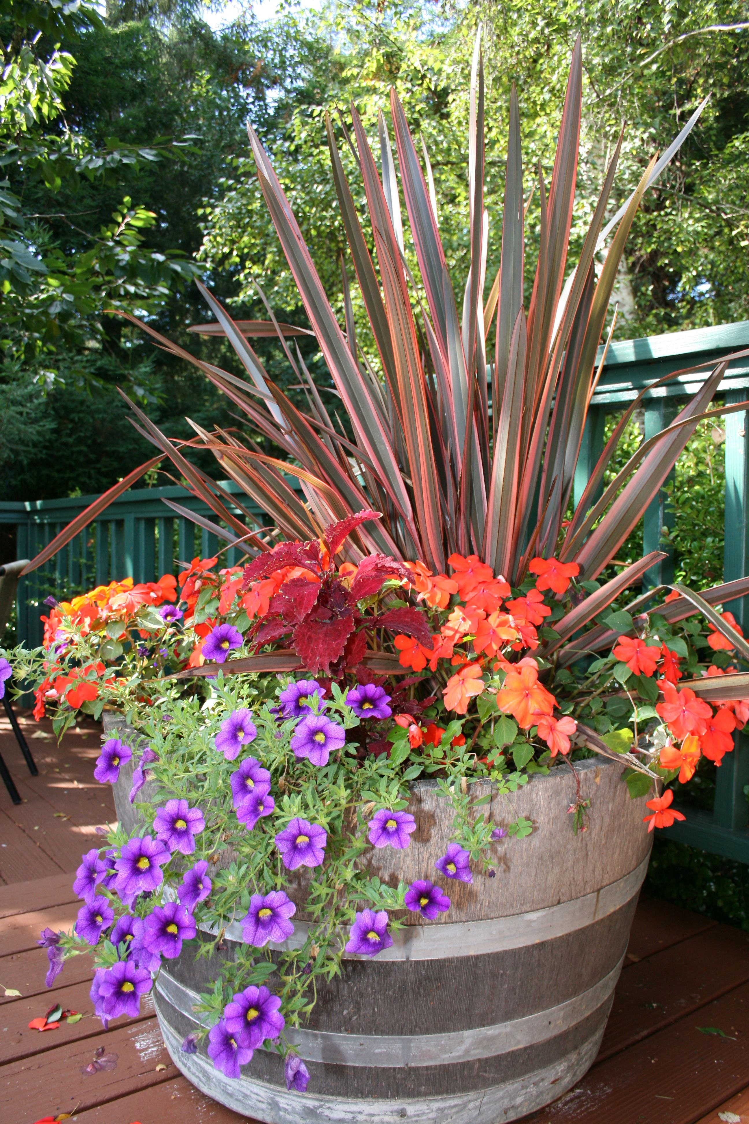 fall color container planting idea