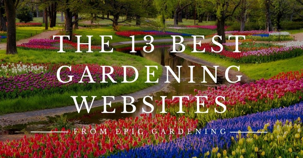 59 Best Gardening Blogs And Websites On The Internet With Images