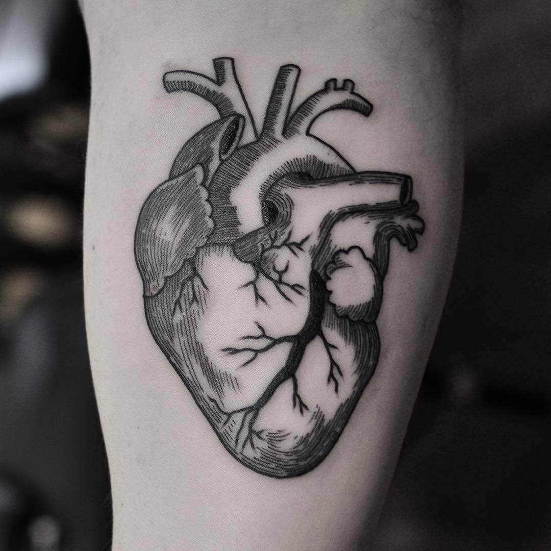 Image result for anatomical heart tattoo | Encre | Pinterest ...