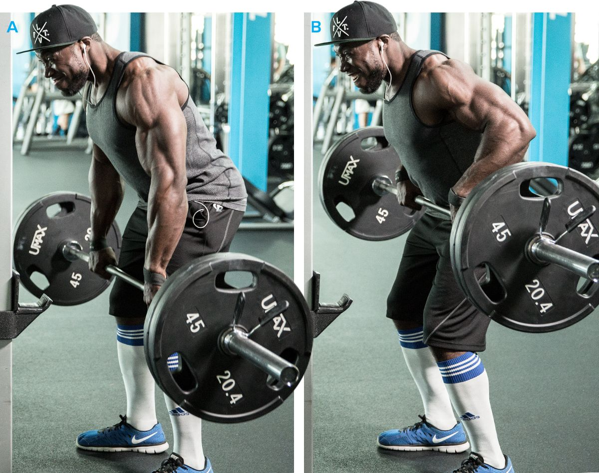 Image result for best back exercises